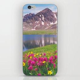 Indian paintbrush/Alpine Lake below Independence Pass, Colorado iPhone Skin