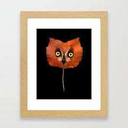 Autumn Owl-3 Framed Art Print