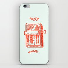 Little Fish iPhone & iPod Skin
