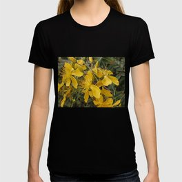 Beautiful St Johns Wort T-shirt
