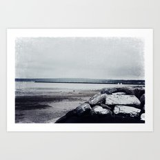 Winter Shore Art Print