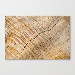 Weathered Wood Grain Canvas Print