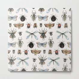 Entomology Metal Print