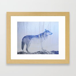 Exposed Wolf Framed Art Print