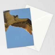 Osprey in Flight Stationery Cards