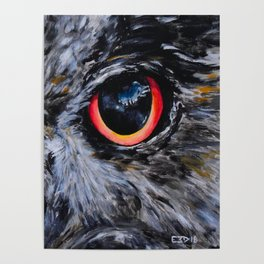Sight: The Eyes of an Eagle Owl Poster