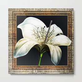 White Lily on Gold Manuscript Metal Print