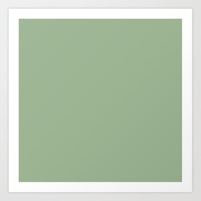 Solid Color SAGE GREEN Kunstdrucke
