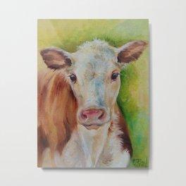 CALF Cute farm animal portrait oil painting Metal Print