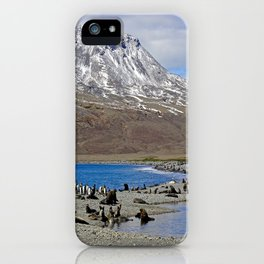 Fur Seals, King Penguins and Snowy Mountains iPhone Case