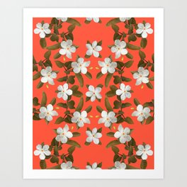 White Angel Flowers in Tangerine Art Print