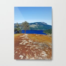 Lone Arbutus, Mid Afternoon Stoney Hill Metal Print