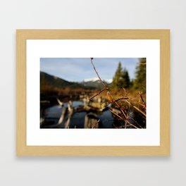Vermilion Lakes Early Morning - Banff Framed Art Print