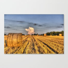 The English Summer Farm Canvas Print