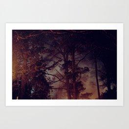 lit up forest Art Print