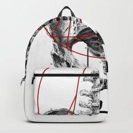 Bacino Backpack