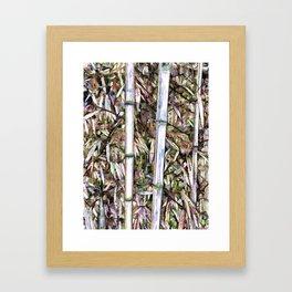 Bamboo Stalks Framed Art Print