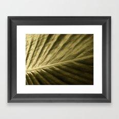 'Golden Leaf' Framed Art Print