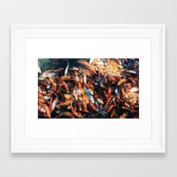 chinese Framed Art Prints featuring Chinese Koi by Alexander Jedermann