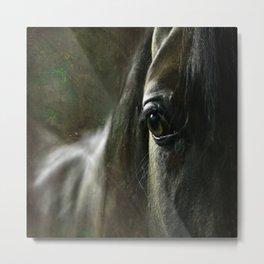 Arabian horse's eye Metal Print