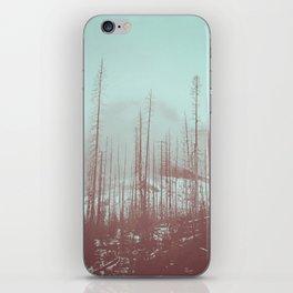 Burnt Winter iPhone Skin