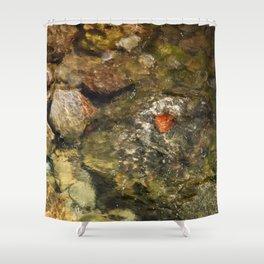 Leaf in a burn Shower Curtain