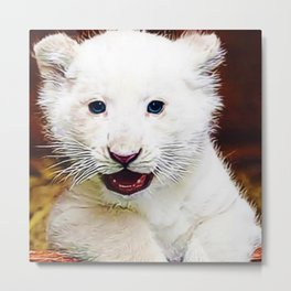 Blue-eyed Baby White Lion Cub Portrait Metal Print