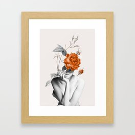 Rose 3 Framed Art Print