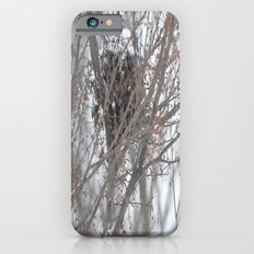 Home amoung the berries  iPhone 6s Slim Case