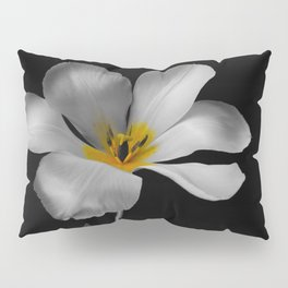 Moon Tulip Pillow Sham