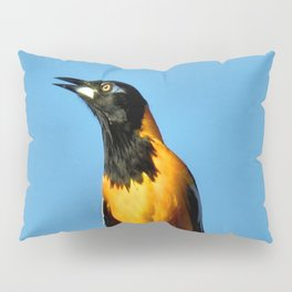 Melody Of Freedom Pillow Sham