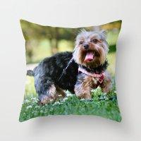 yorkie Throw Pillows featuring Darling Yorkie by IowaShots