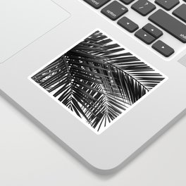 Tropical Palm Leaves - Black and White Nature Photography Sticker