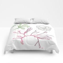 Seaweed and Lotus Root Comforters