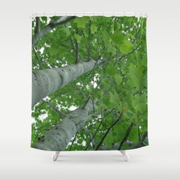 Treetop View  Shower Curtain