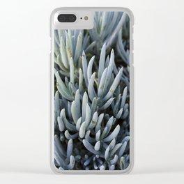 Succulents in Blue Clear iPhone Case