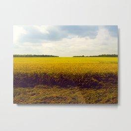 Prairie Landscape Bright Yellow Wheat Field Metal Print