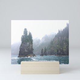 Kenai Fjords Pillars - 1 Mini Art Print