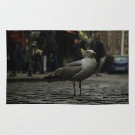 Not a flocking chance, Dublin Rug