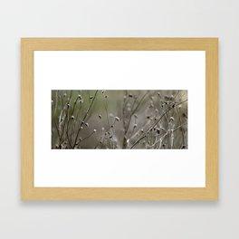 Wild Heather Framed Art Print