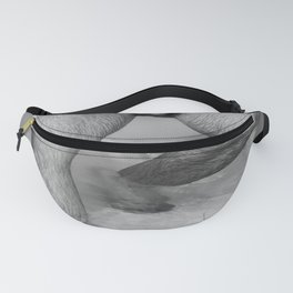 Male Descending Fanny Pack