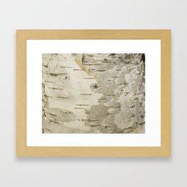 Birch Nature Tree Bark Pattern Framed Art Print