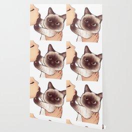 kiss cute cat 4 Wallpaper