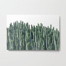 Teal Cactus Desert Metal Print