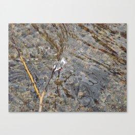 Natures Flow Canvas Print
