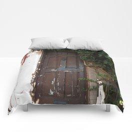 Georgetown Brick and Vine Comforters
