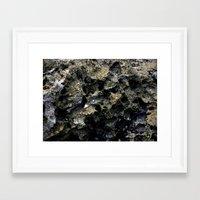 rocky Framed Art Prints featuring Rocky by C. Wie Design