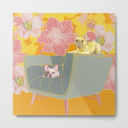 Dogs in chairs French Bull Dogs Metal Print