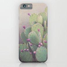 Still Life in Marfa iPhone 6s Slim Case