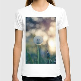 Dandelion blossom defocused seed head T-shirt